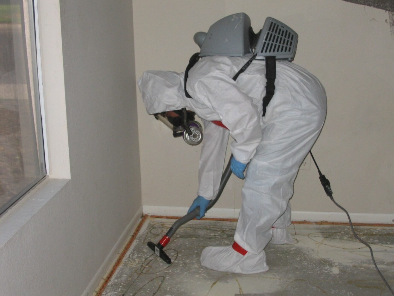 Asbestos-Mold-Lead-4