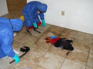 decontamination3-300x225